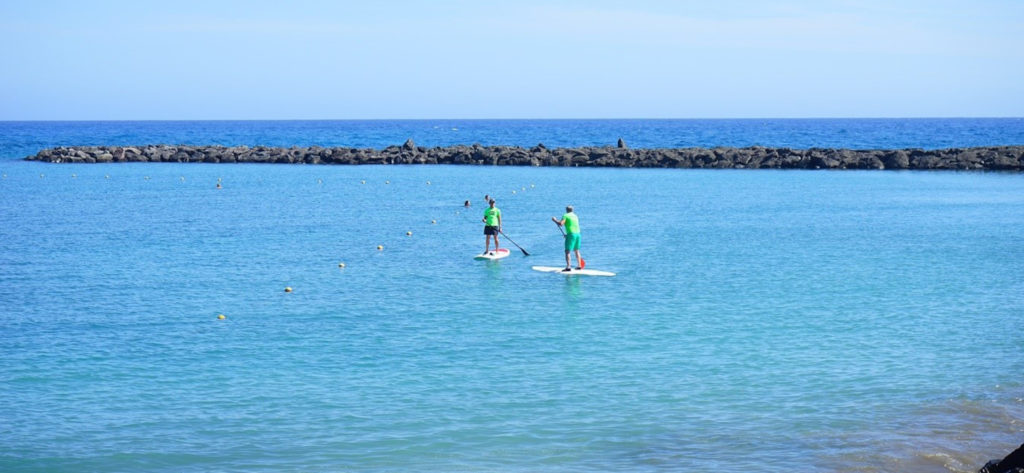 Stand Up Paddleboard Coastal Leader Provider
